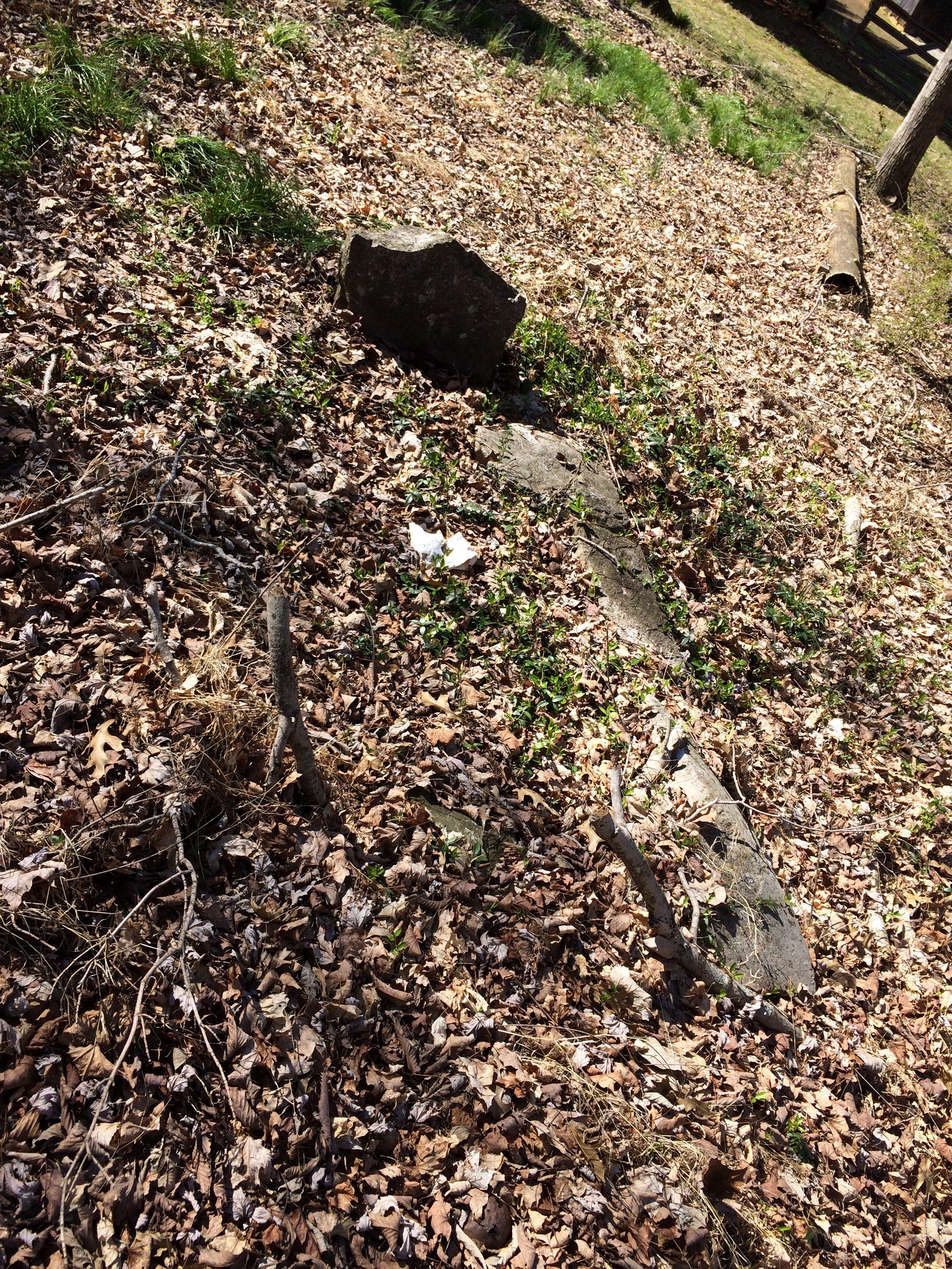 Old unknown grave behind Raintree Inn