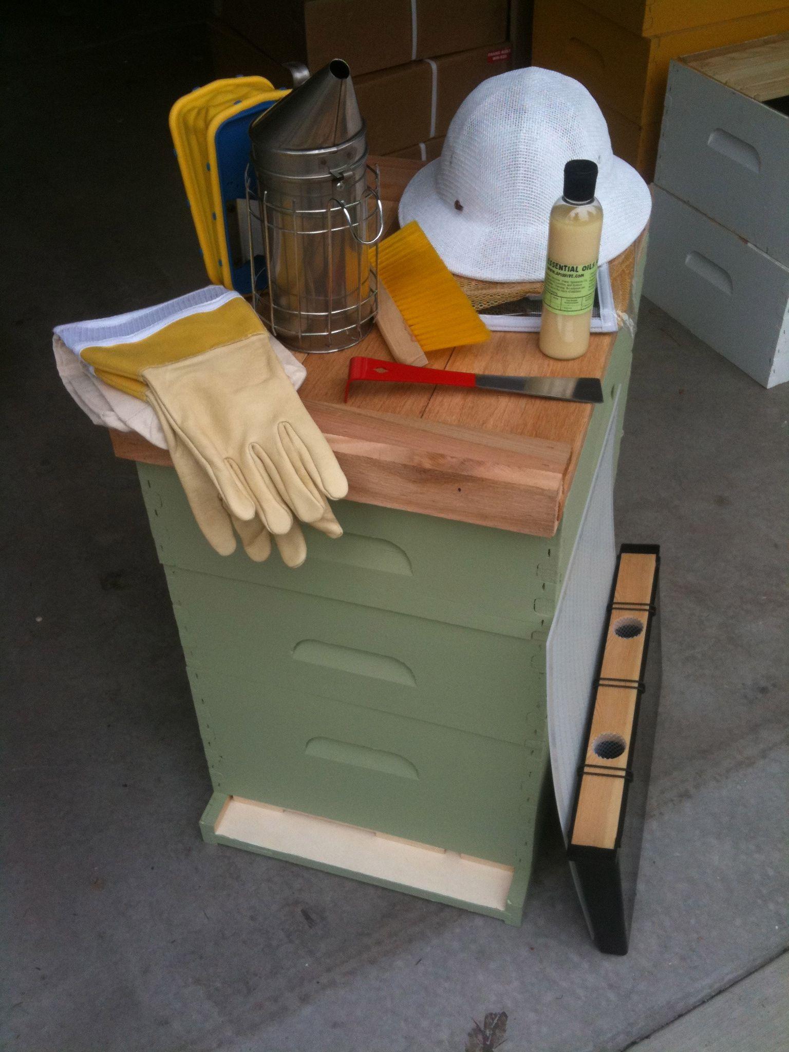 basic starter honey bee kits homesteading pinterest bees and