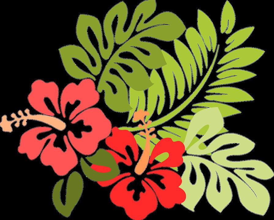 ceiling stencils painting ideas - hawaii 960 720 895×720