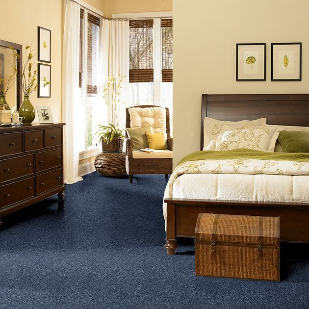 Full Court 12 Blue Carpet Bedroom Living Room Carpet Bedroom