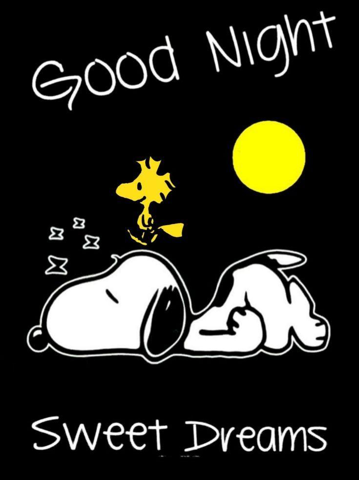 Snoopy guten morgen bilder
