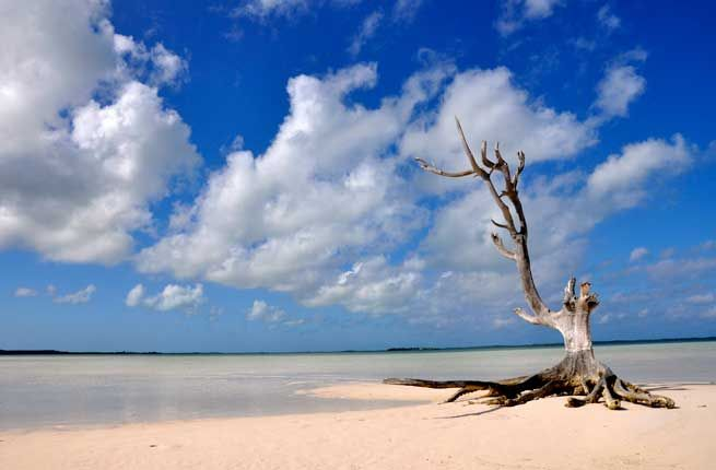 Worlds Most Unique Beaches Pink Sand Beach Pink Sand And - The 15 most unusual and beautiful beaches in the world