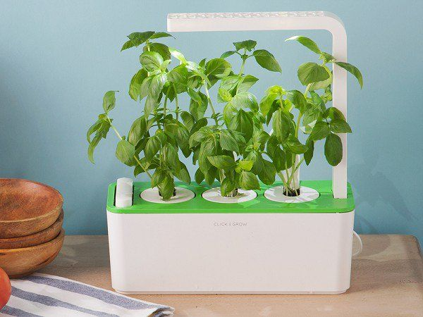 This Herb Planter Discovered By The Grommet Lets You 400 x 300