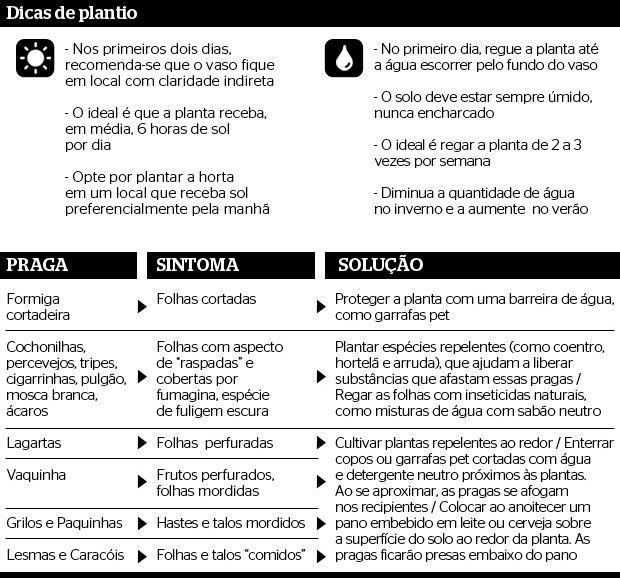 Cebolinha