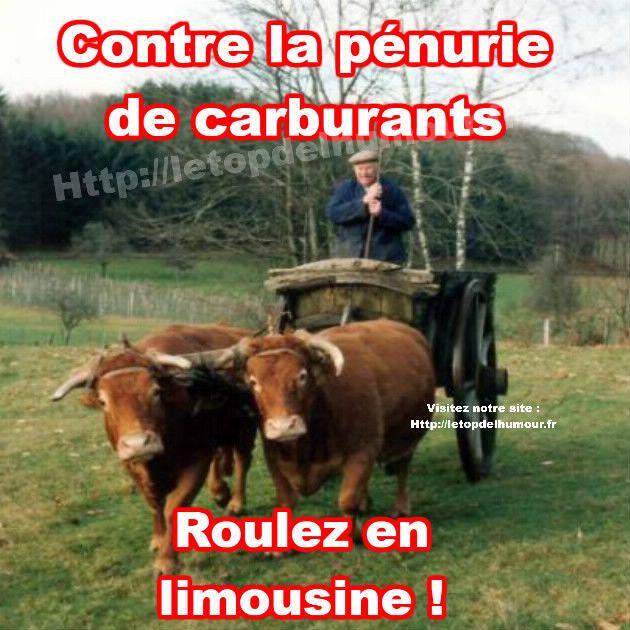 P nurie de carburants humour humour rigolo et - Dessin vache humour ...
