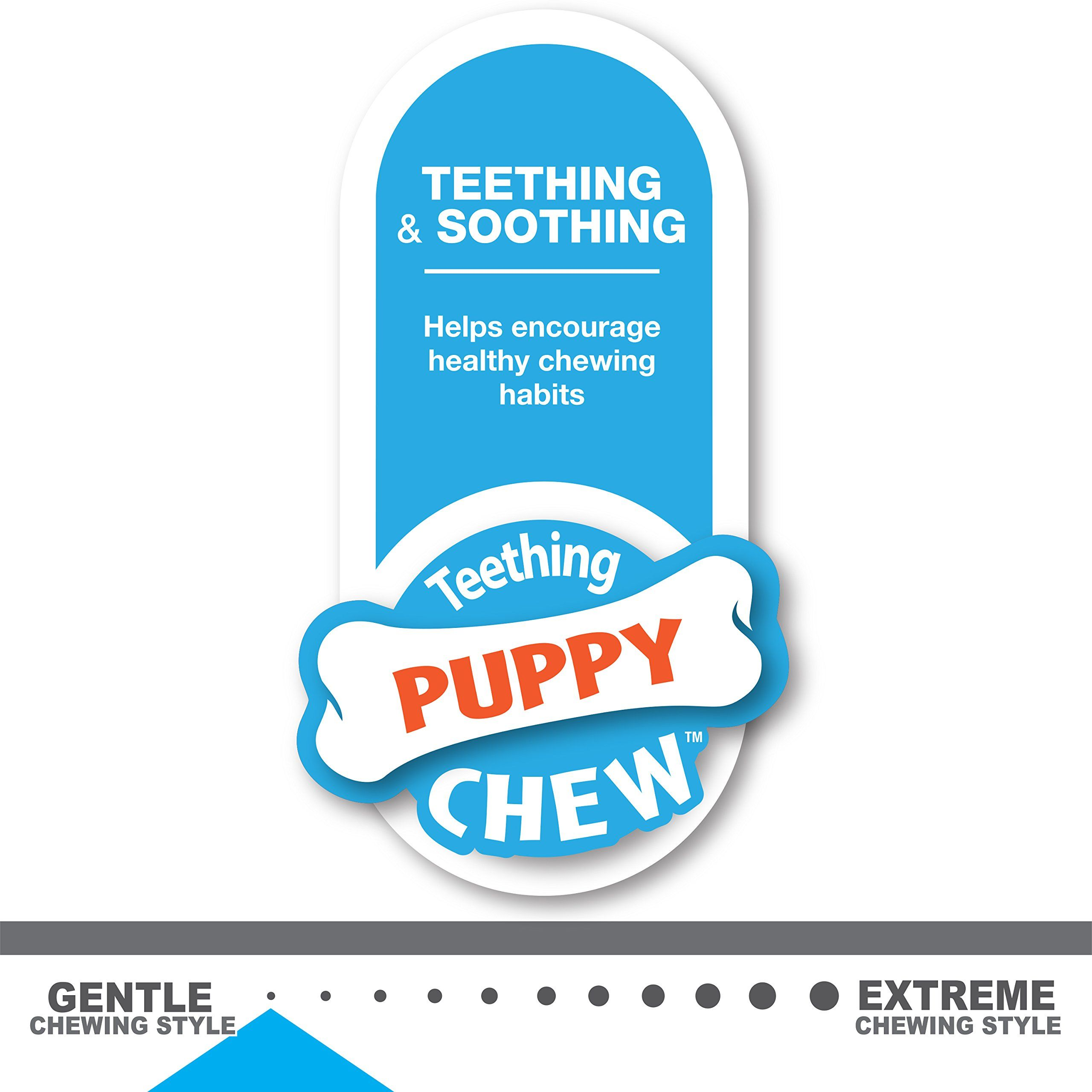 Nylabone Puppy Chew Toy Twin Pack Xsmall Flavor Medley Color And