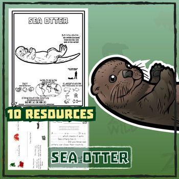Sea Otter 15 Zoo Wild Resources Leveled Reading Slides