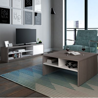 Latitude Run Frederick 2-Piece Storage Coffee Table and TV Stand Set ...
