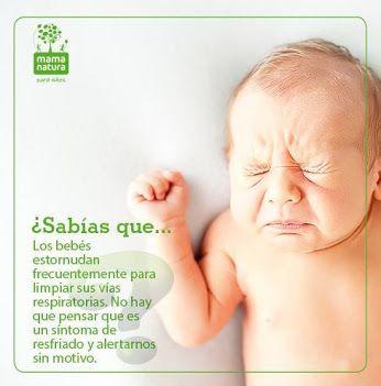 Sabías que... Estornudos bebés -  Mama Natura