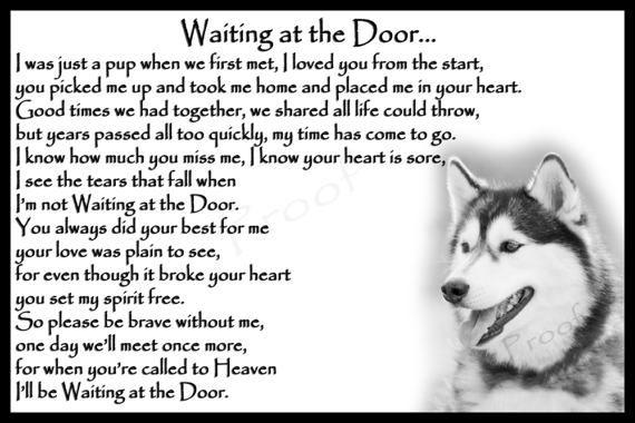 Siberian Husky Dog Pet Loss Memorial Bereavement Fridge Magnet