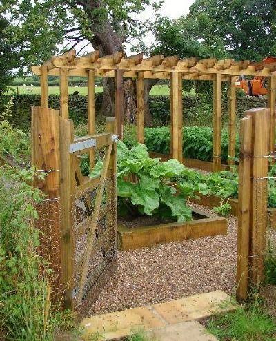 Fruit and Vegetable Garden - Timber edged rectangular raised beds