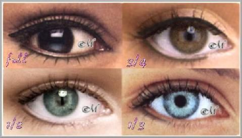Permanent Makeup Eyeliner Styles Permanent Eyeliner Pictures Of