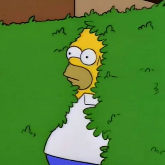 The Full Circle Journey of Homer Simpson Backs Into the