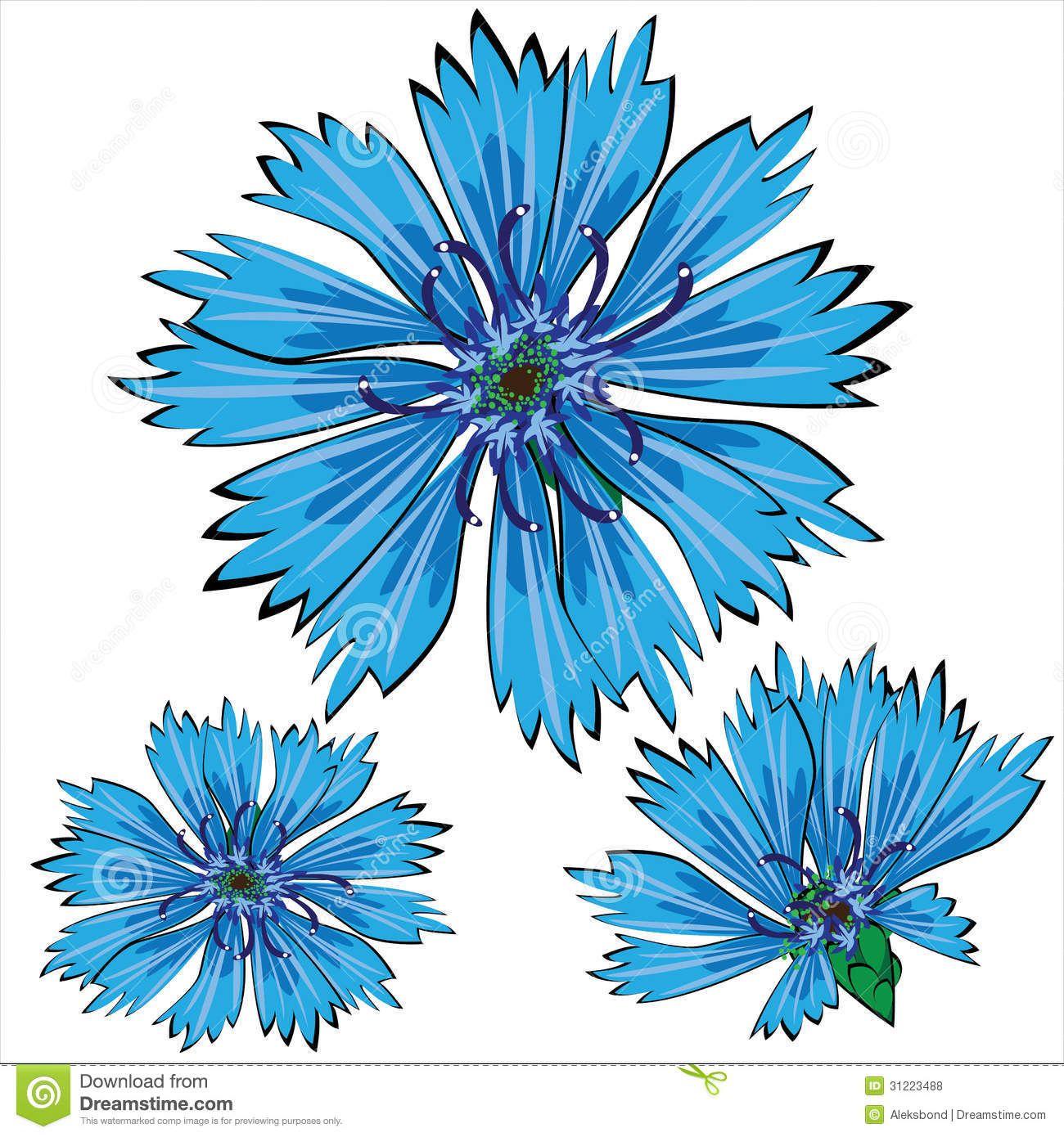cornflower blue clip art