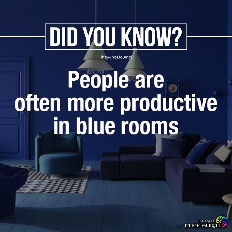 Did You Know With Images Fun Facts Interesting Facts About