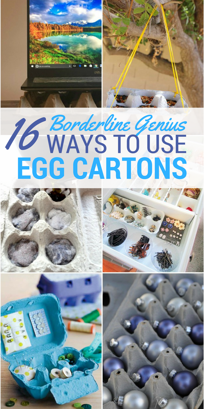 16 Borderline Genius Ways To Use Egg Cartons Egg Carton Egg Carton Crafts Reuse Crafts