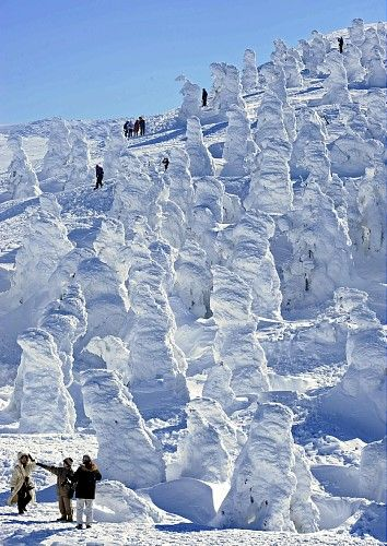 juhyo snow monsters trees covered with snow zao yamagata rh pinterest com