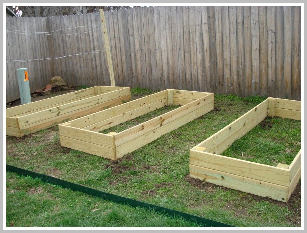 32 Reference Of Raised Vegetable Garden Bed Ideas In 2020 Building Raised Garden Beds Vegetable Garden Raised Beds Cedar Raised Garden Beds