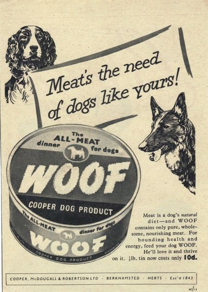 1953 Woof Cooper Dog Product Advert Uk Vintage Advertising