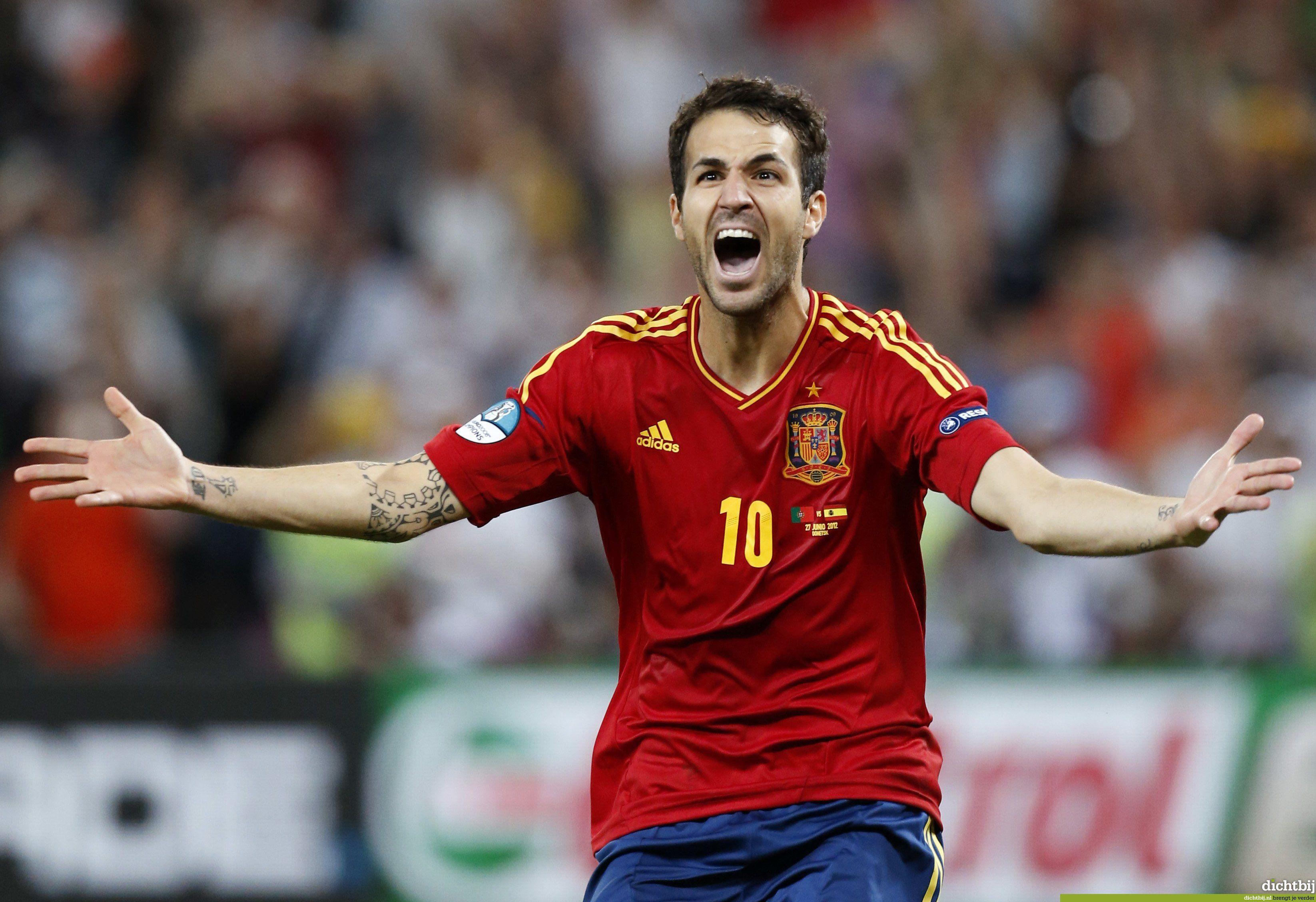 Euro 2012 SpainPortugal nailbiter lures record TV