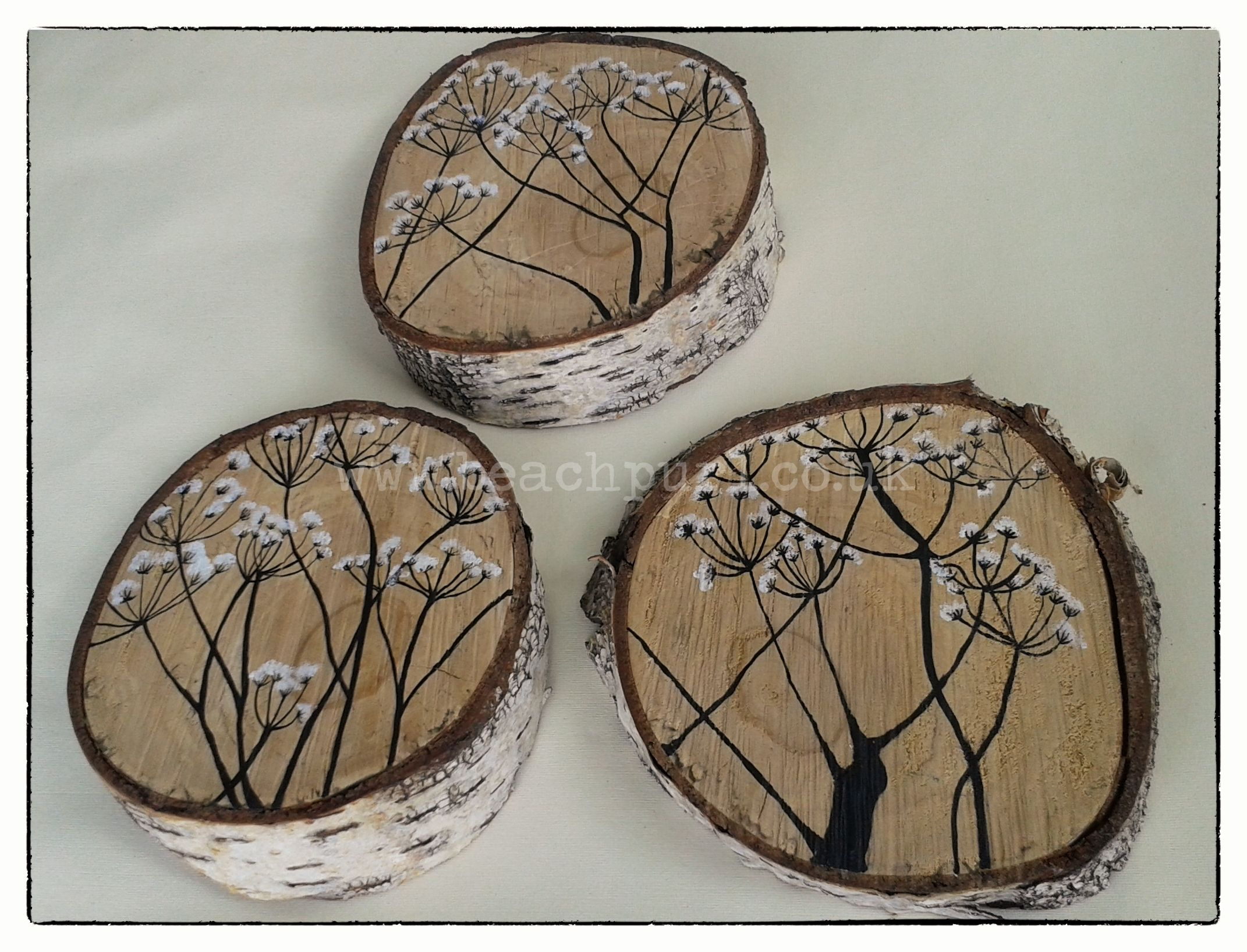 Three Cow Parsley Indian Ink Paintings On Wood Painting Bark Tree
