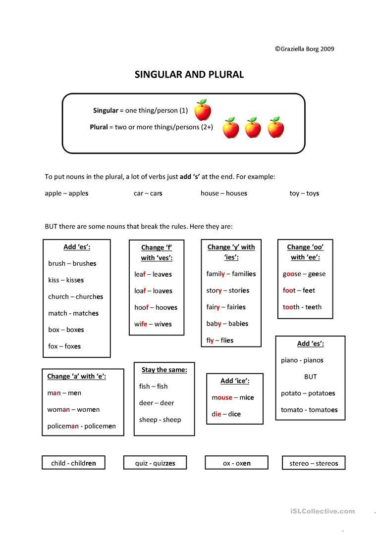 Singular Plural Notes Singular And Plural Plurals Plurals Worksheets [ 1079 x 763 Pixel ]