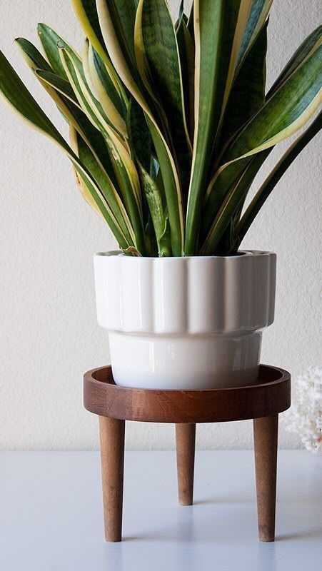 Awesome Stand Wooden Plant Ideas Cool 43 Awesome Stand Wooden Plant IdeasCool 43 Awesome Stand Wooden Plant Ideas