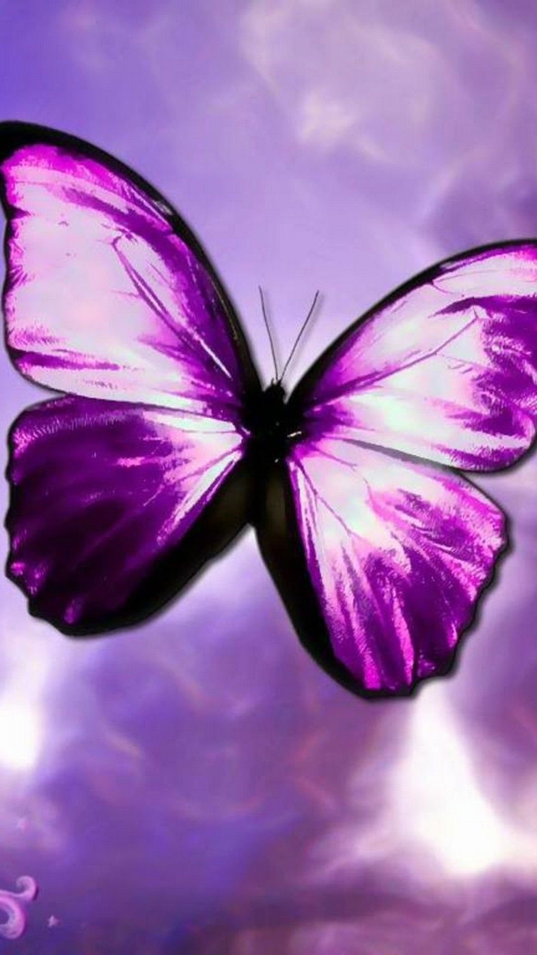 Purple Butterfly Wallpaper For Android Best Mobile Wallpaper Purple Butterfly Wallpaper Butterfly Wallpaper Blue Butterfly Wallpaper
