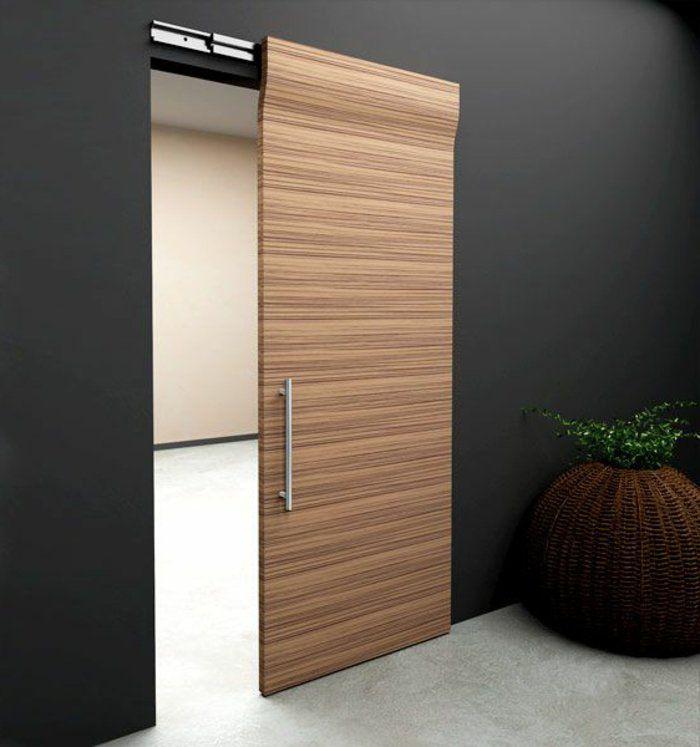 1-porte-coulissante-à-galandage-en-bois-clair-mur-noir-plante-verte