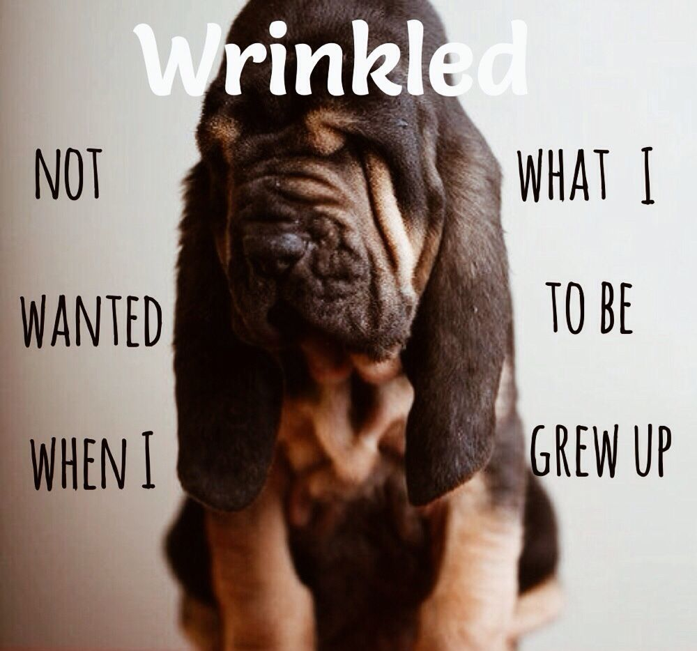 Let's face it: wrinkles will never be your friend. | #goodbyewrinkles #skin #skincare #radiantderma | https://sarahns.myrandf.com/