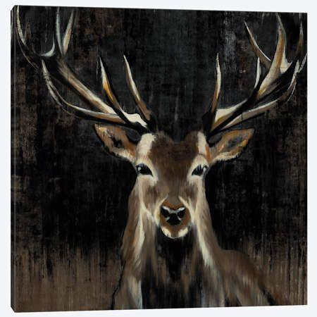Young Buck Canvas Wall Art by Liz Jardine   iCanvas