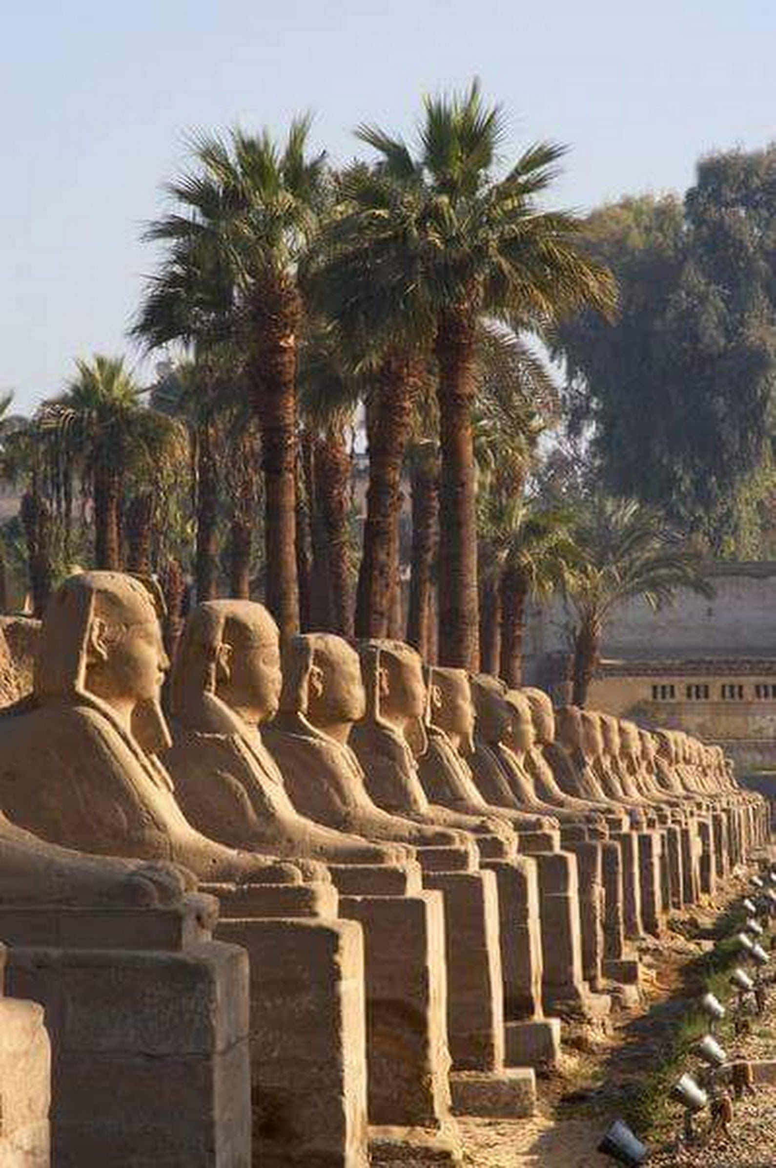 Greetings from the sphinxesavenue karnak temples luxor greetings from the sphinxesavenue karnak temples luxor peace kristyandbryce Choice Image