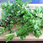 طريقة حفظ الخضار الورقية في الثلاجة مدونة شهية Store Fresh Herbs Herbs Fresh Herbs