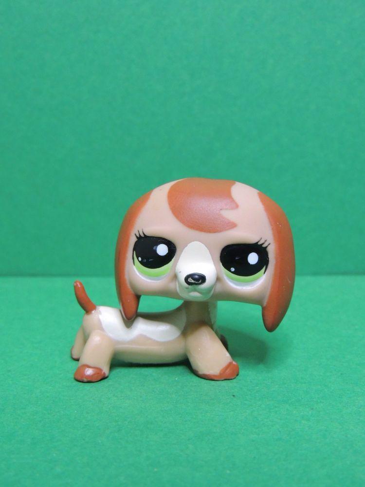 2035 chien teckel basset caramel dachshund dog lps - Chien pet shop ...