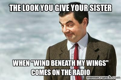 Funny Meme About Missing Someone : Wind beneath my wings for my sister meme and humor