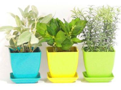 indoor hydroponic gardening supplies indoor hydroponic