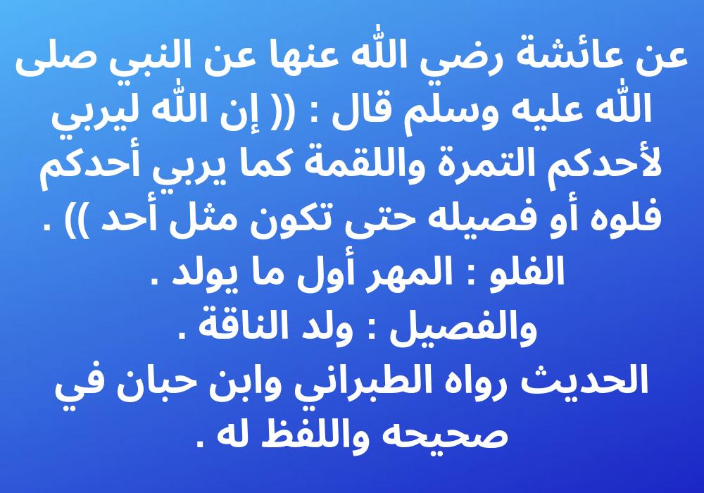 Pin By الدعوة إلى الله On أحديث نبوية شريفة عن فضل الصدقة وآجرها