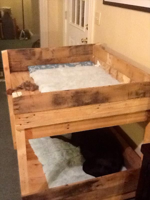 Diy Pet Bunk Bed Plans To Build Dog Bed Pallet