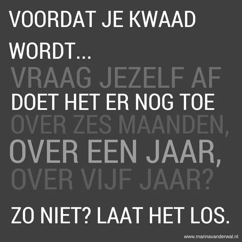 Citaten Hart Wisuda : Spreuk nederlandse teksten pinterest spreuken