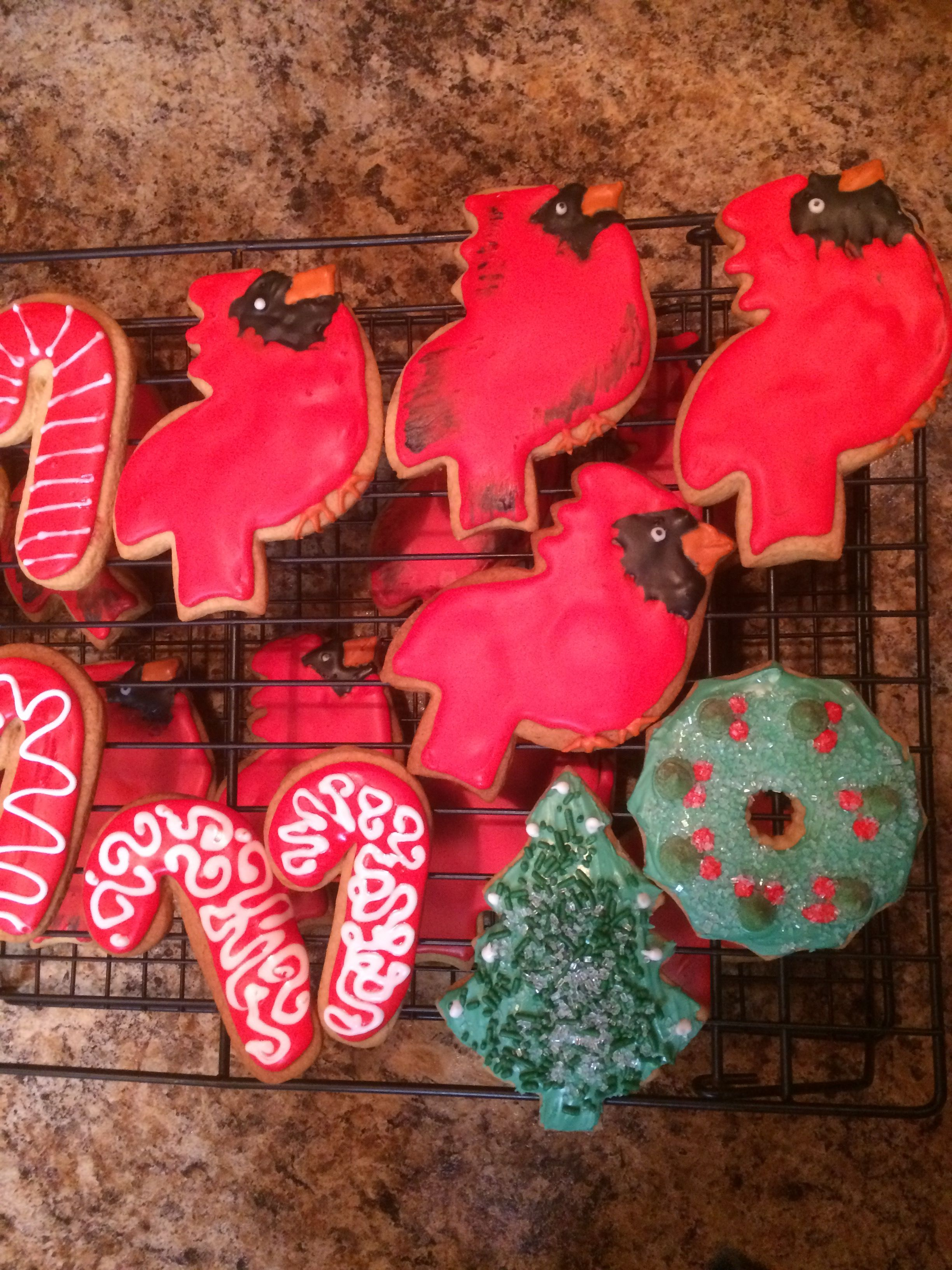 Cardinal bird Christmas theme