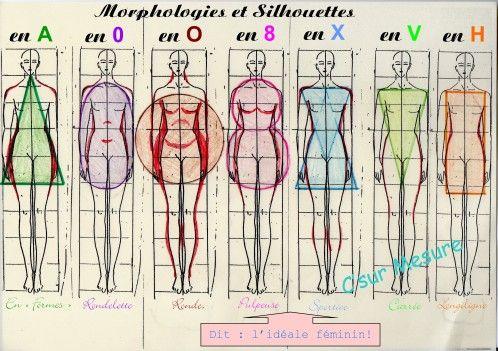 5371cd2864ba1b Planche des morphologies féminines. Certains ajoutent la morphologie ...