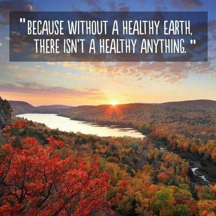 Image result for because without a healthy earth there isn't a healthy anything