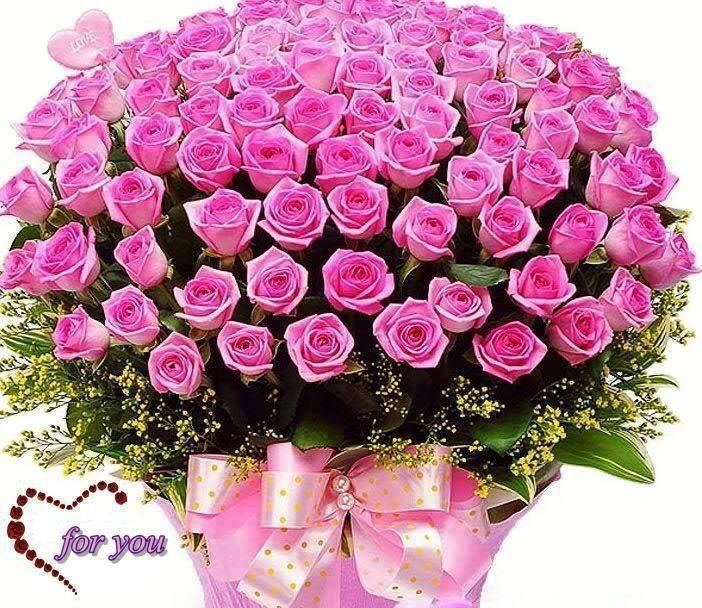 Pink Roses Wallpapers | Flowers | Pinterest | Rose wallpaper and ...