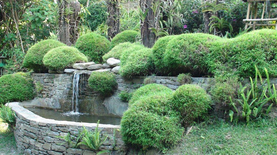 Jardines Ecológicos Topotepuy Ofrecen Domingos Familiares Visitas Guiadas Cursos Http Www Topotepuy Com Garden Bridge Caracas Outdoor