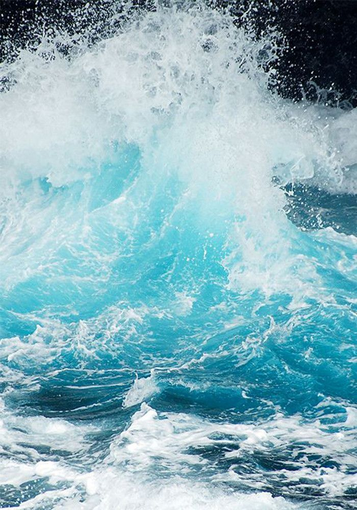 Beautiful shot of a breaking wave