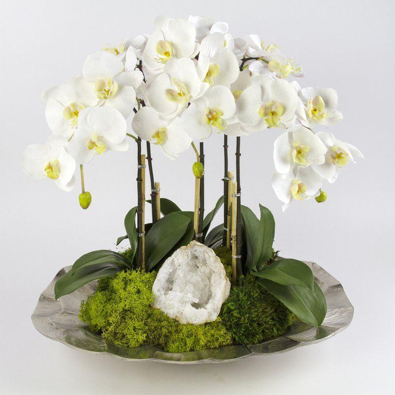 t c floral company orchids floral arrangement in planter flowers rh pinterest com
