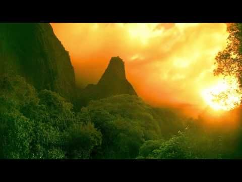 Tropical Rainforest Evening Mp3 Ambient Noise Rainforest Youtube Forest Sunset Forest View Sunset Nature