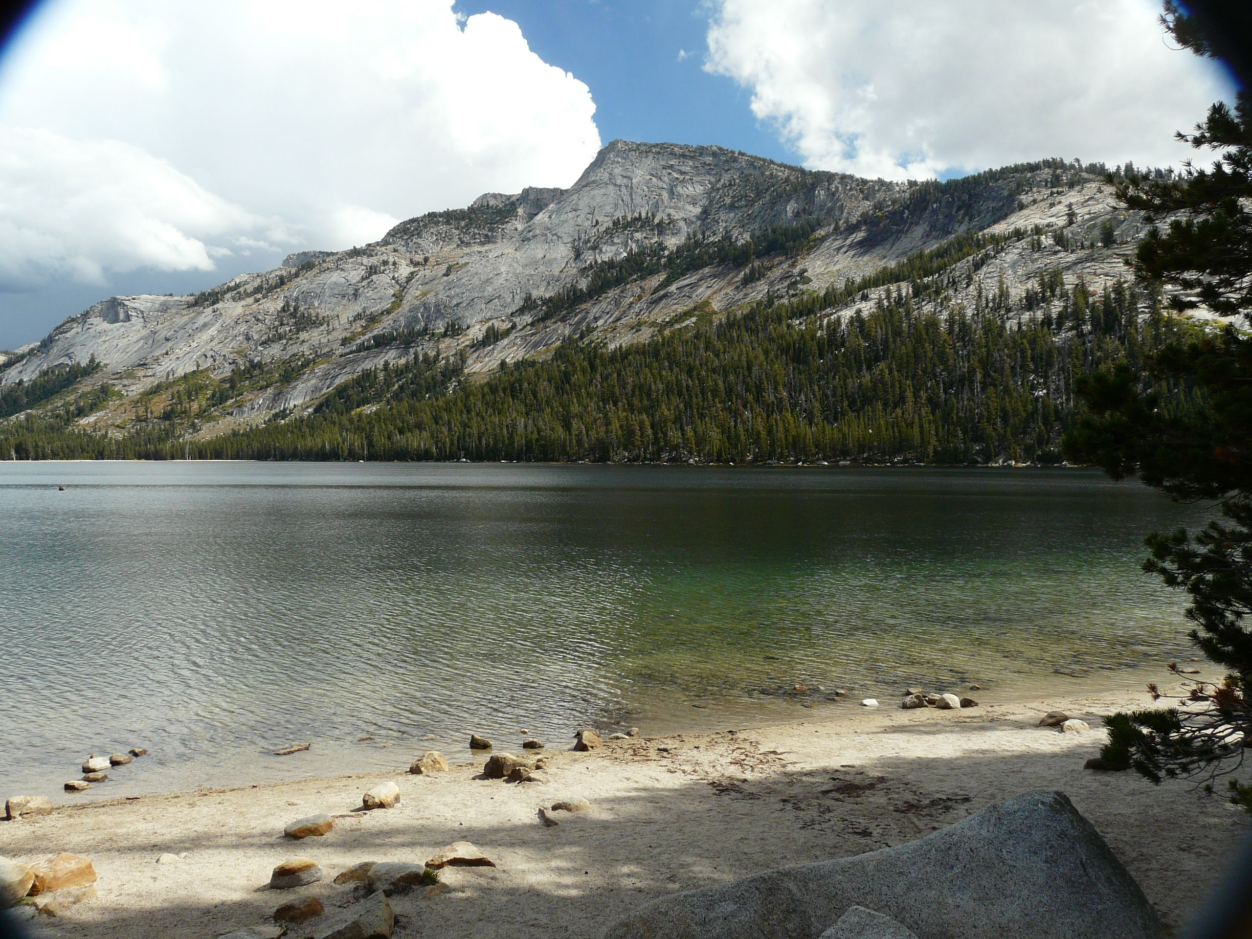 Pin on California/Yosemite