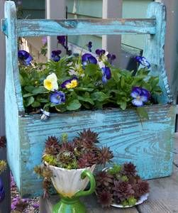 How can anyone say no  to a pansy box....