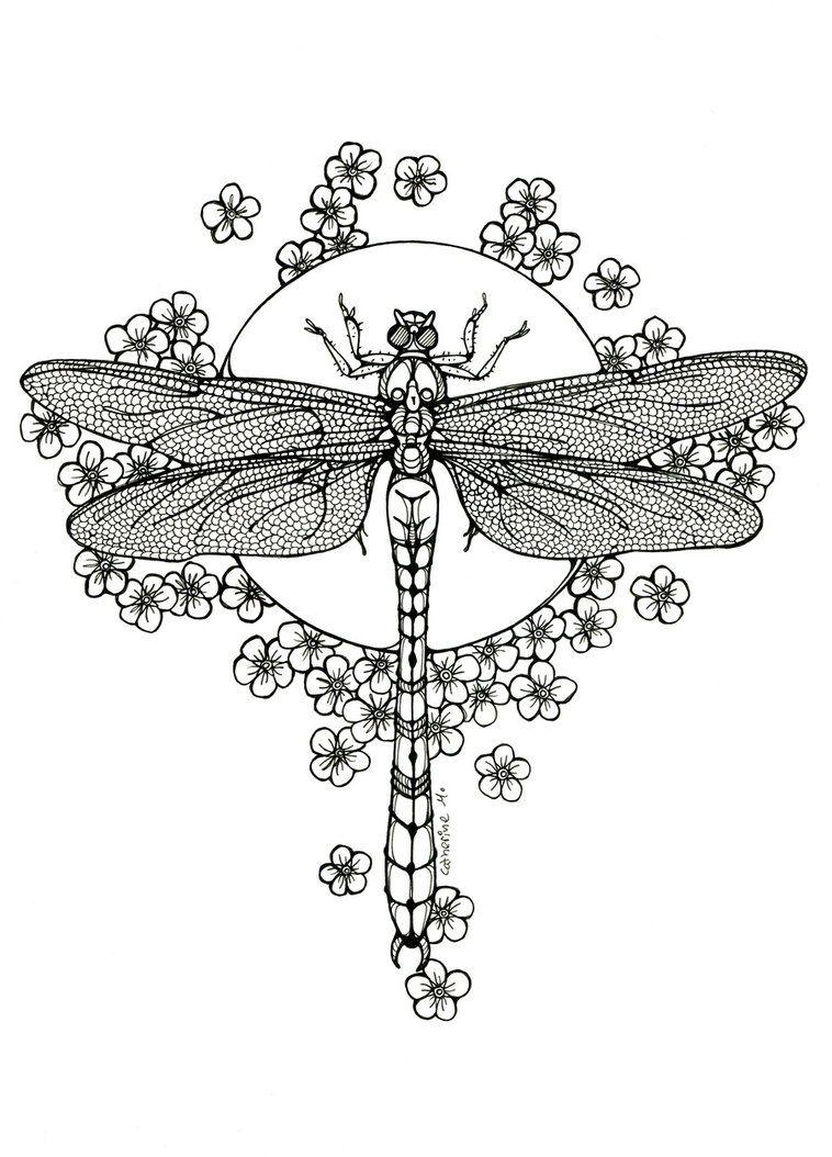 Dragonfly - lineart by CathM on DeviantArt | bordados | Pinterest ...